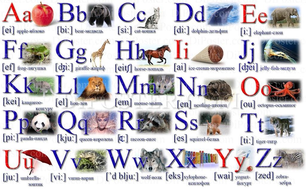 Алфавит по английскому в картинках для детей