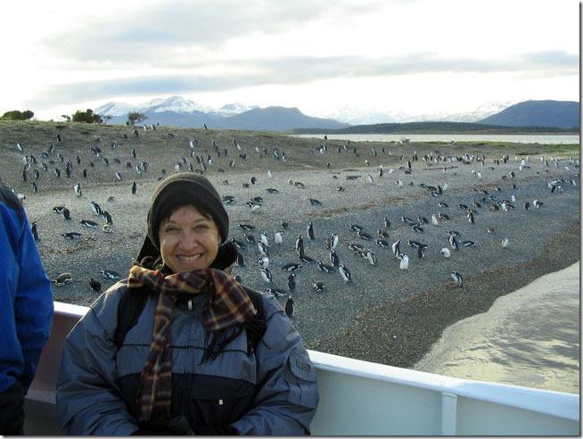 Ushuaia_ilha-dos-pinguins-2