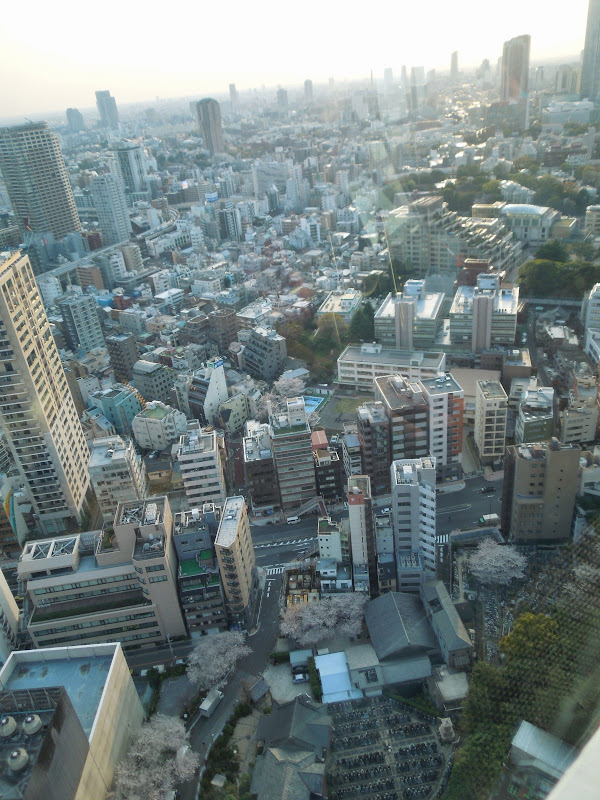 2014 Japan - Dag 3 - danique-DSCN5658.jpg
