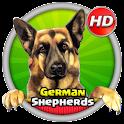 German Shepherds Wallpaper HD icon