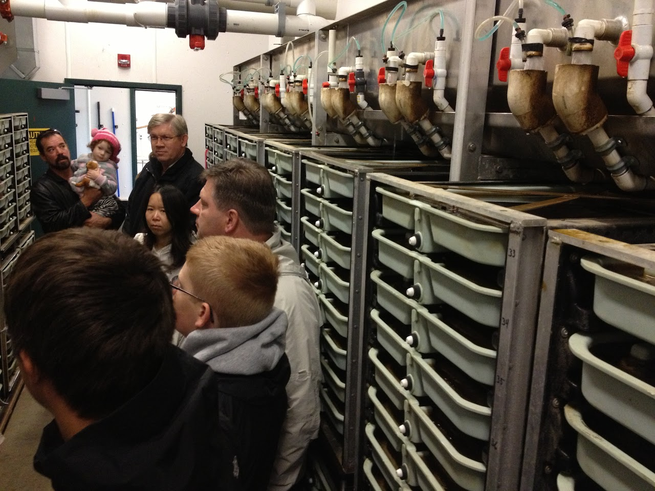 Issaquah Salmon Hatchery Tour - IMG_0466.JPG