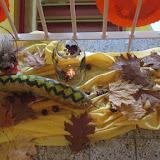 podzimní výstavka