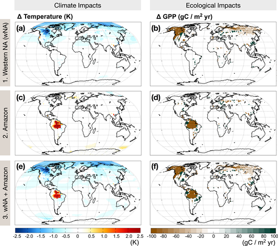 Climatic and ecological responses to Amazon and wNA forest loss. Anomalies in annually averaged temperature in Kelvin (panels a, c, e) and annual gross primary productivity in gC/m2yr (panels b, d, f), calculated as the difference between the control and experimental case of forest loss in western North America alone (wNA, panels a, b); the Amazon alone (panels c, d) and the wNA+Amazon together (panels e, f). Values that do not pass a significance test at 95% confidence are not included. Graphic: Garcia, et al., 2016 / PLOS