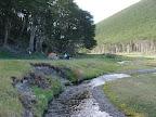 Rio Sin Nombre Cruce de Tierra del Fuego Trekking Desde Estancia Carmen al Lago Fagnano, y desde la Sierra Valdivieso al Canal Beagle! 7 dias de Trekking intenso.