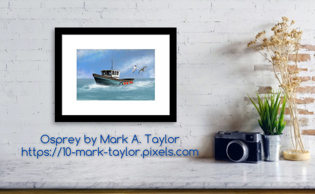 osprey artwork by Mark Taylor Fine Art America