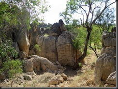 170529 013 Fitzroy Crossing Geikie Gorge NP