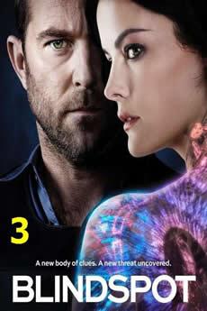 Baixar Série Blindspot 3ª Temporada (2018) Dublado Torrent Grátis