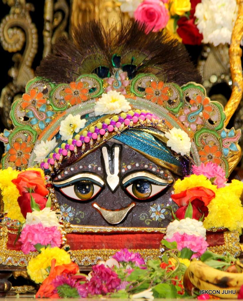 ISKCON Juhu Sringar Deity Darshan 7 Jan 2017  (12)