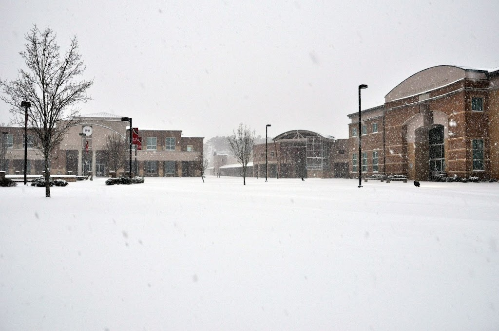 UACCH Snow Day 2011 - DSC_0007.JPG