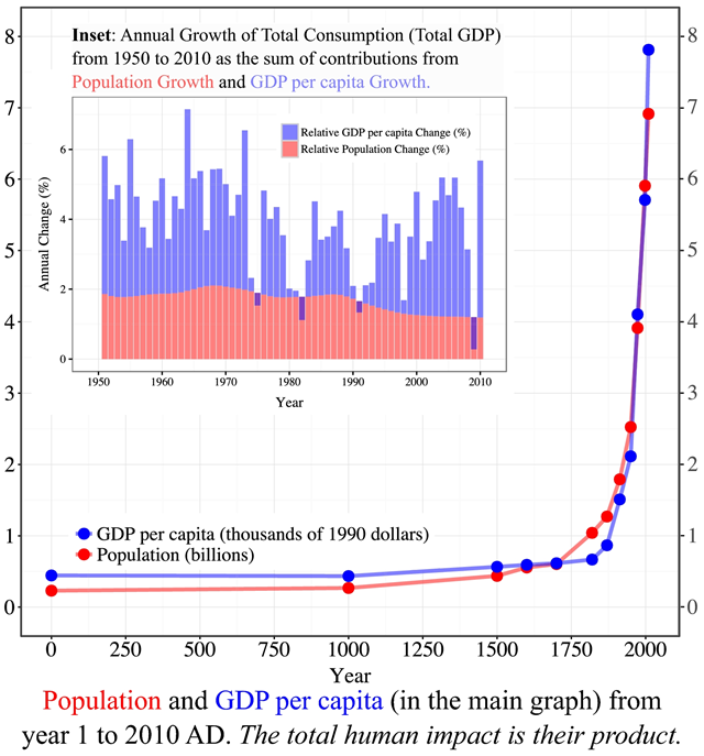 World population and GDP per capita from year 1 to 2010 AD. The total human impact is their product. The inset shows the relative annual change of each between 1950 and 2010. Their averages were 1.69 percent and 2.21 percent, respectively, out of a total of ∼4% (average annual change in GDP). Therefore, growth in population and consumption per capita have both played comparably important roles in the remarkable increase of human impact on planet Earth. This ∼4 percent total growth corresponds to doubling the total impact every ∼17 years. Note that the contribution from population growth has been relatively steady, while the contribution from the relative change in GDP per capita has been much more variable from year to year (even negative for some years). Graphic: Motesharrei, et al., 2017 / National Science Review