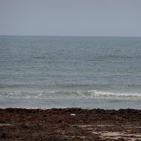 Surfside 2011 - 100_9480.JPG
