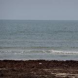 Surfside 2011 - 100_9480.JPG