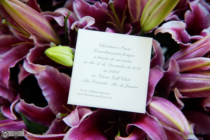Foto de casamento 0044 de Christiane e Omar. Marcações: 17/12/2010, Casamento Christiane e Omar, Convite, Convite de Casamento, Paradiso delle Bomboniere Italia, Rio de Janeiro.