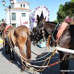 CaminandoalRocio2011_384.JPG
