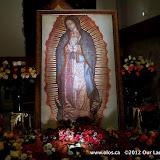 La Virgen de Guadalupe 2011 - IMG_7381.JPG