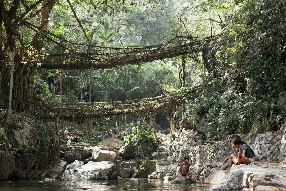 ultimate-guide-best-tourist-places-india-_Meghalaya