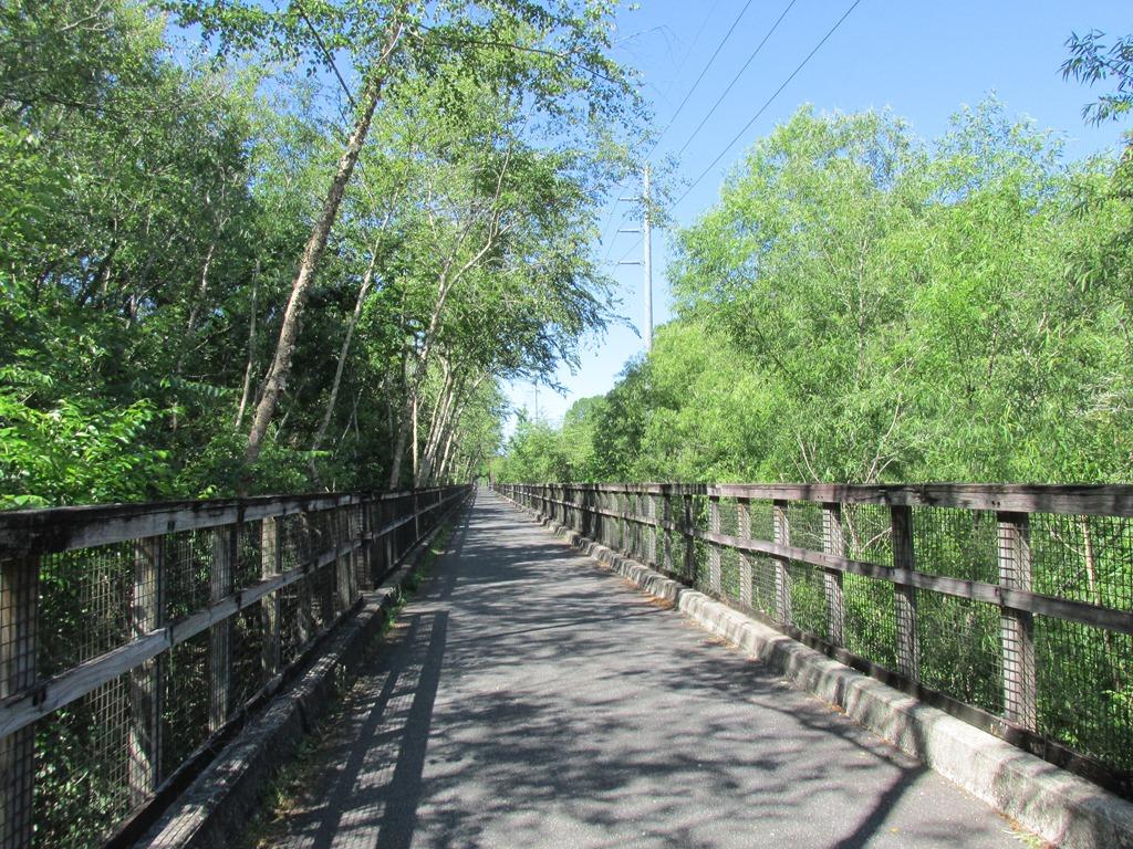 [6a-Trestle-Bridge-Over-Suwannee-Rive%5B2%5D]