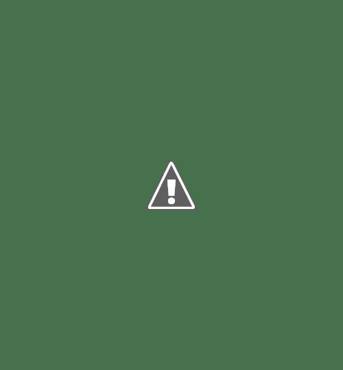 18 05 2013 03+copy - Кошки ))