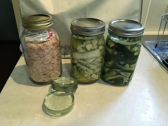 04 Fermented Cucumbers, Salt and Glass Discs 7-9-18