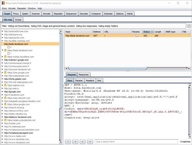 Burp Suite Screenshot