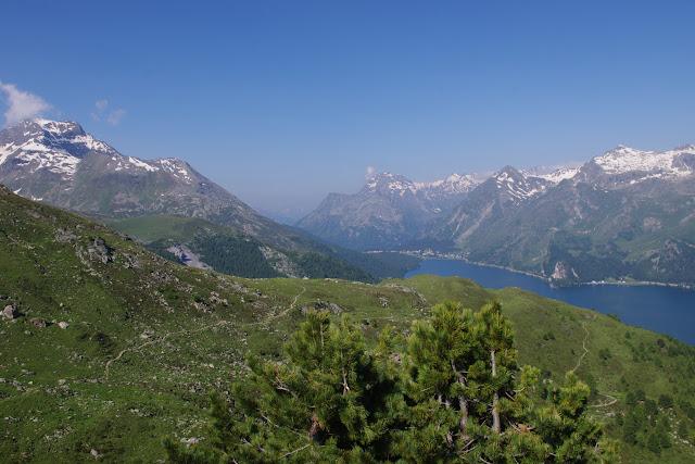 Vue sur le Lej da Segl (Lac de Sils) depuis Furtscherllas, 2350 m (Engadine, Grisons, CH). 11 juillet 2013. Photo : J.-M. Gayman