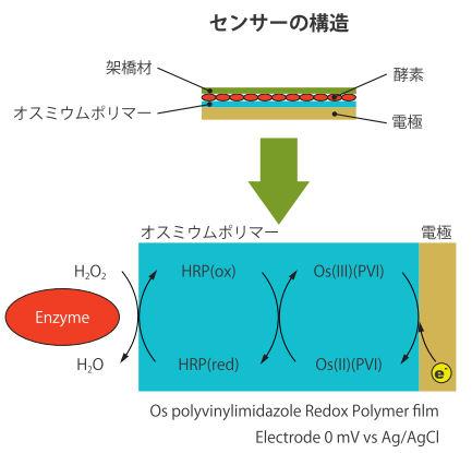 センサーの構造