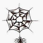 cobweb - Spider Designs