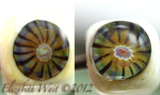 M50-2012-02-21-20-36.JPG