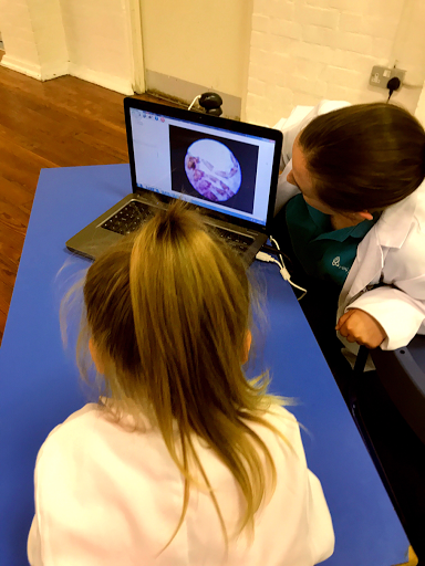 Mini Professors microscope learn