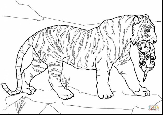 Fabulous Tiger Mother Cub Coloring Page With Tiger Coloring Pages And Tiger  Coloring Pages For Adults