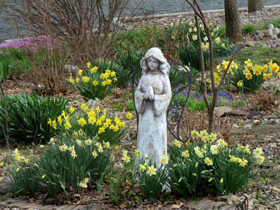 Angel Among the Daffodils