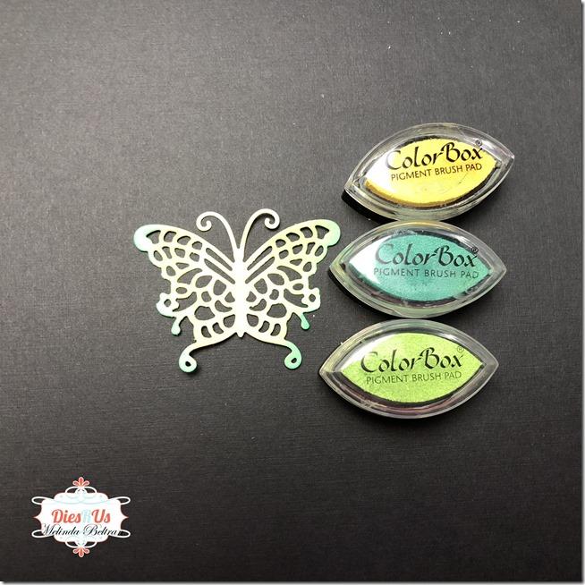 butterfly w ink