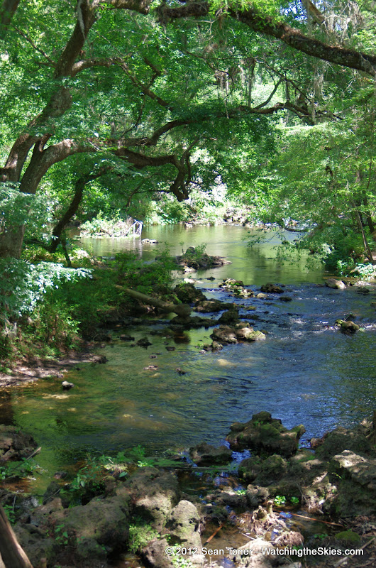 04-04-12 Hillsborough River State Park - IMGP9657.JPG