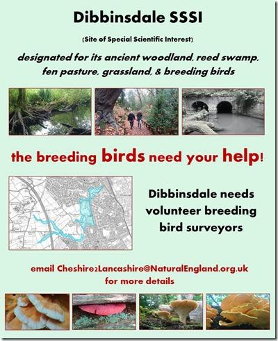 Dibbinsdale breeding birds