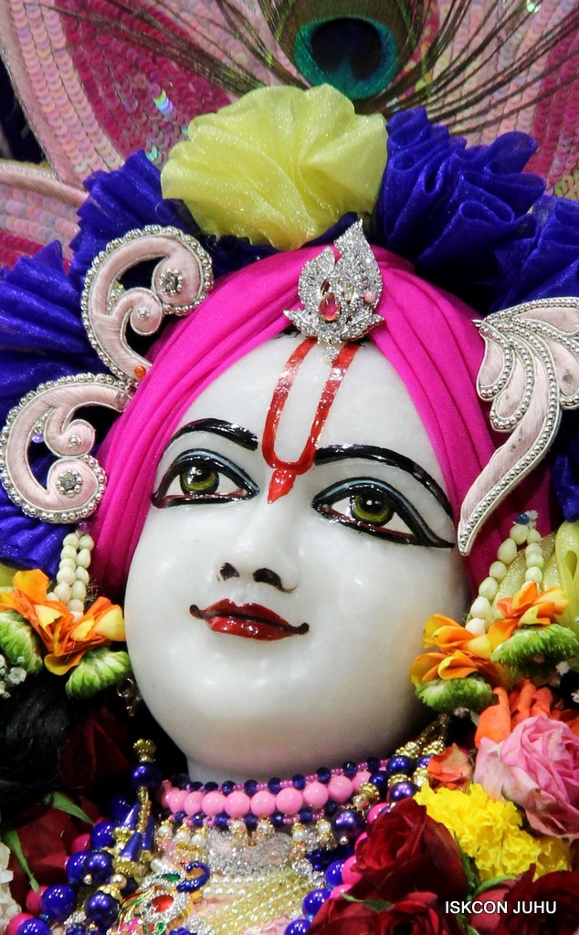 ISKCON Juhu Sringar Deity Darshan 5 Jan 2017 (36)