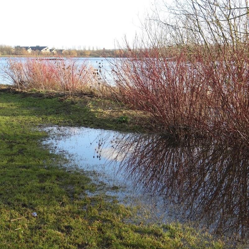 Willen_Lake_22.JPG