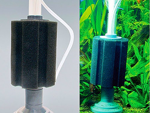 best-aquarium-filter-types-for-fish-(12)