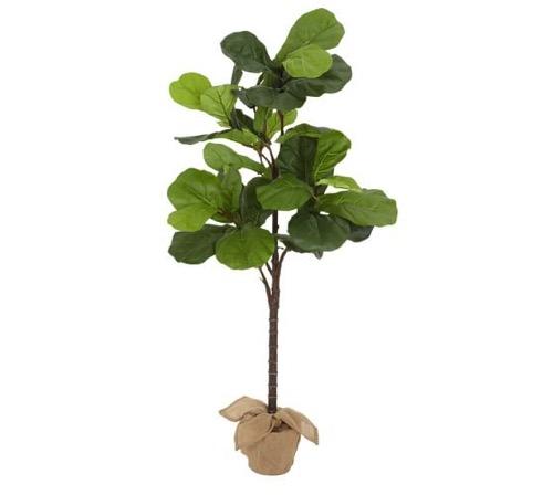 Pottery Barn Monkey On Leaf Try