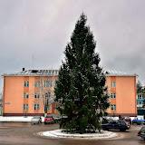 12 декабря 2011 года - главная елка города