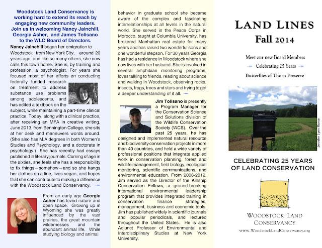 2014 fall news  1