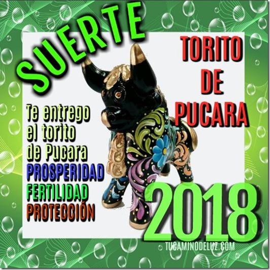 TORITO DE PUCARA 2018