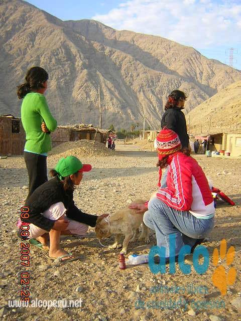 Asistencia Huancavelica por terremoto 2007 (19)