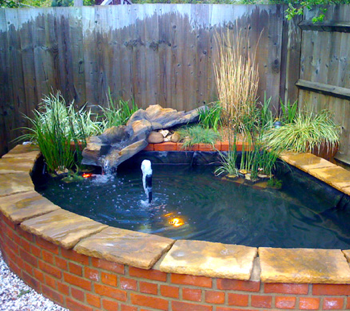 My koi pond july 2015 for How much does it cost to build a fishing pond