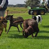 Survival voor Baas en Hond 2012 - DSC_0129.JPG