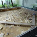 Musée départemental de Préhistoire d'Île-de-France : Salle 1 : Les méthodes de l'archéologie