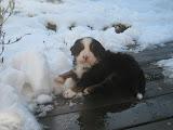 – Jeg kan godt lide sne
