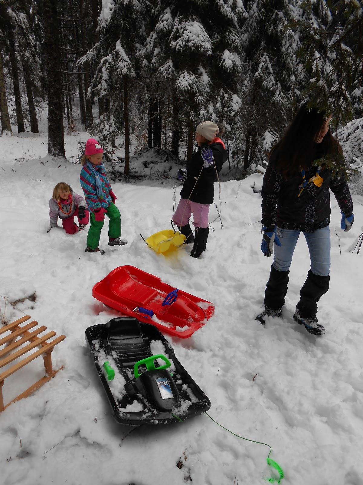MČ zimovanje, Črni dol, 12.-13. februar 2016 - DSCN5001.JPG