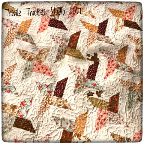 Thistle Thicket Studio, all stars quilt, strip club pattern, quilts, quilting