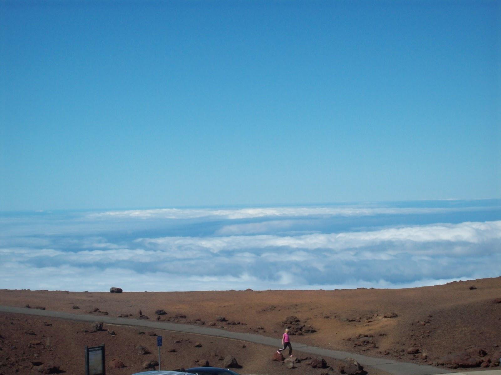Hawaii Day 8 - 114_2128.JPG