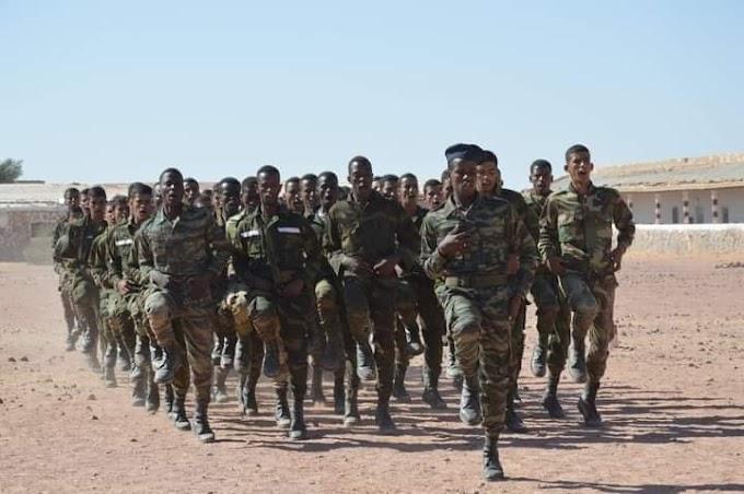 Crece drásticamente el alistamiento al ejército saharaui.